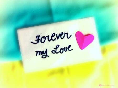 Forever My Love